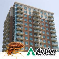 Bed Bug Fumigations For Large Commercial Properties