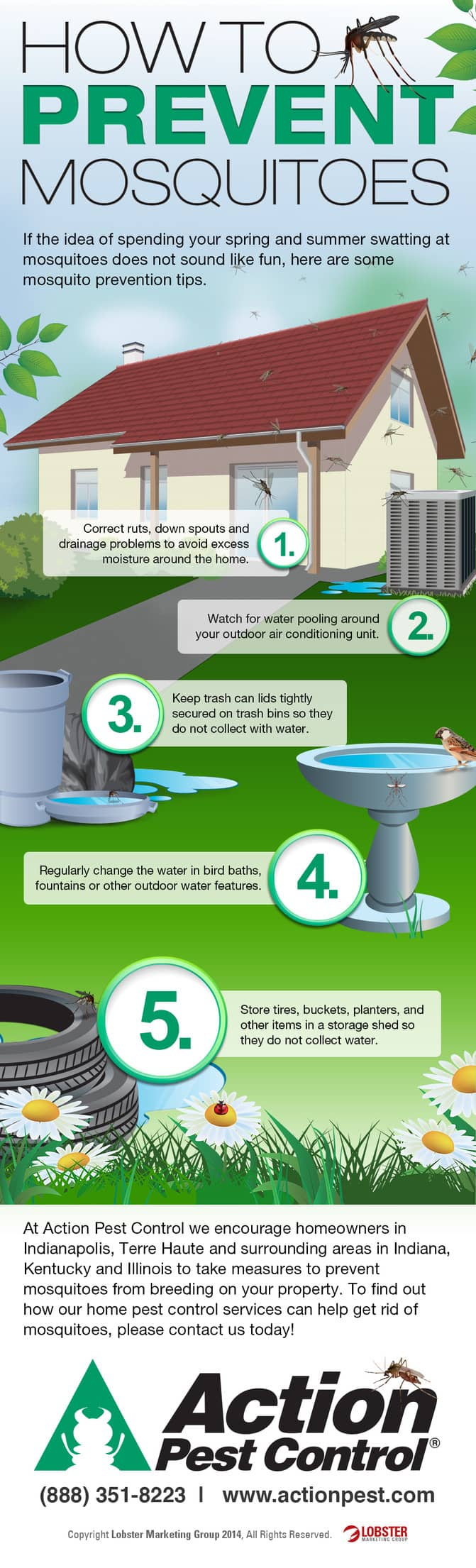 how to prevent mosquitoes this year infographic