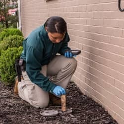 pest control technician checking termite bait station