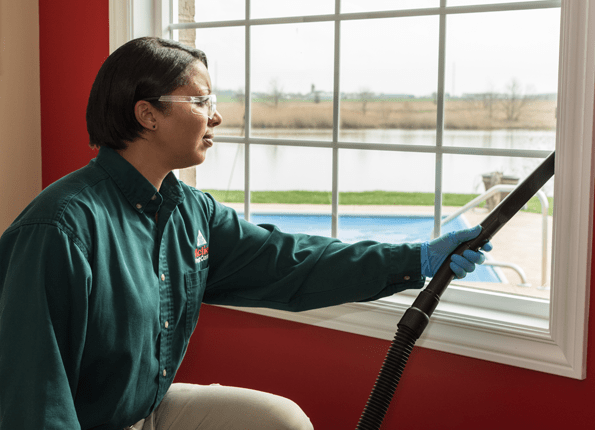 Home Pest Control In Indianapolis And For Homes Throughout